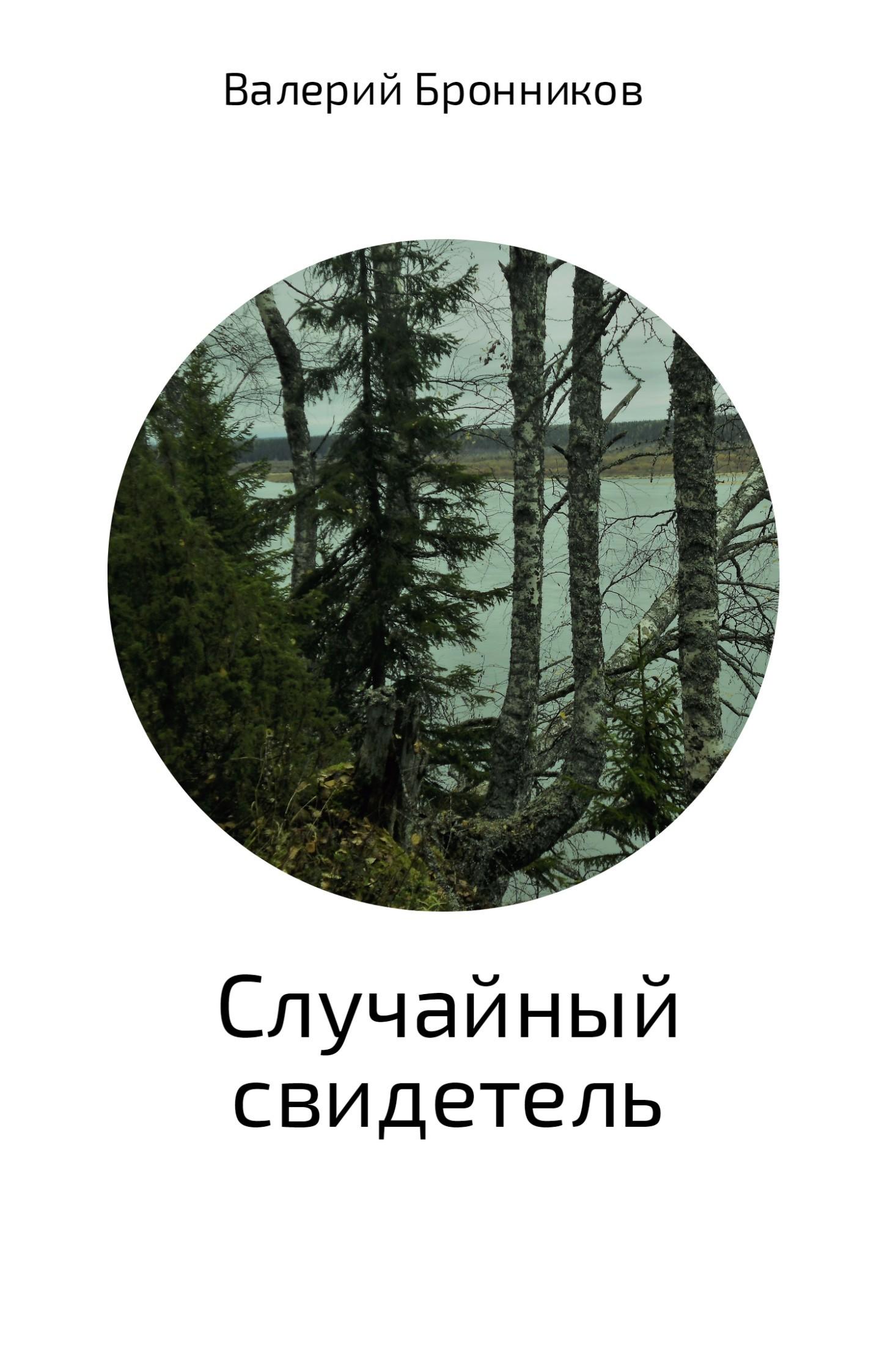 Валерий Викторович Бронников Случайный свидетель загадочное ночное убийство собаки