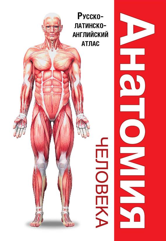Л. Н. Палычева Анатомия человека. Русско-латинско-английский атлас л н палычева популярный атлас анатомии человека