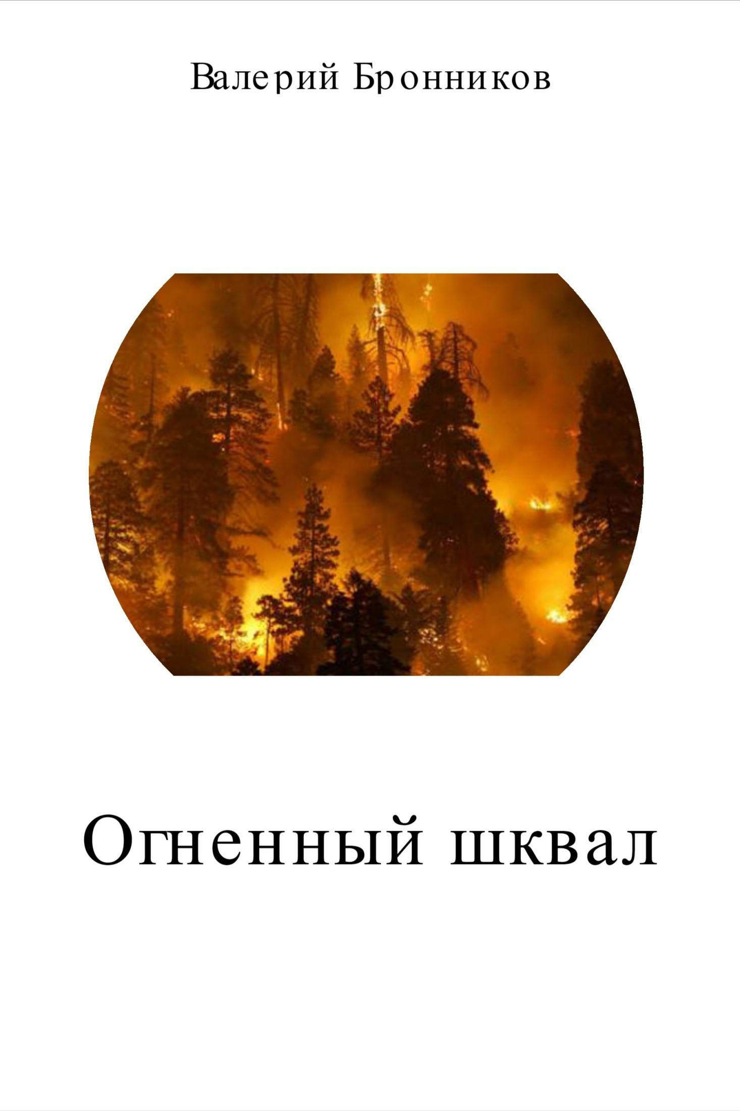 Валерий Викторович Бронников. Огненный шквал