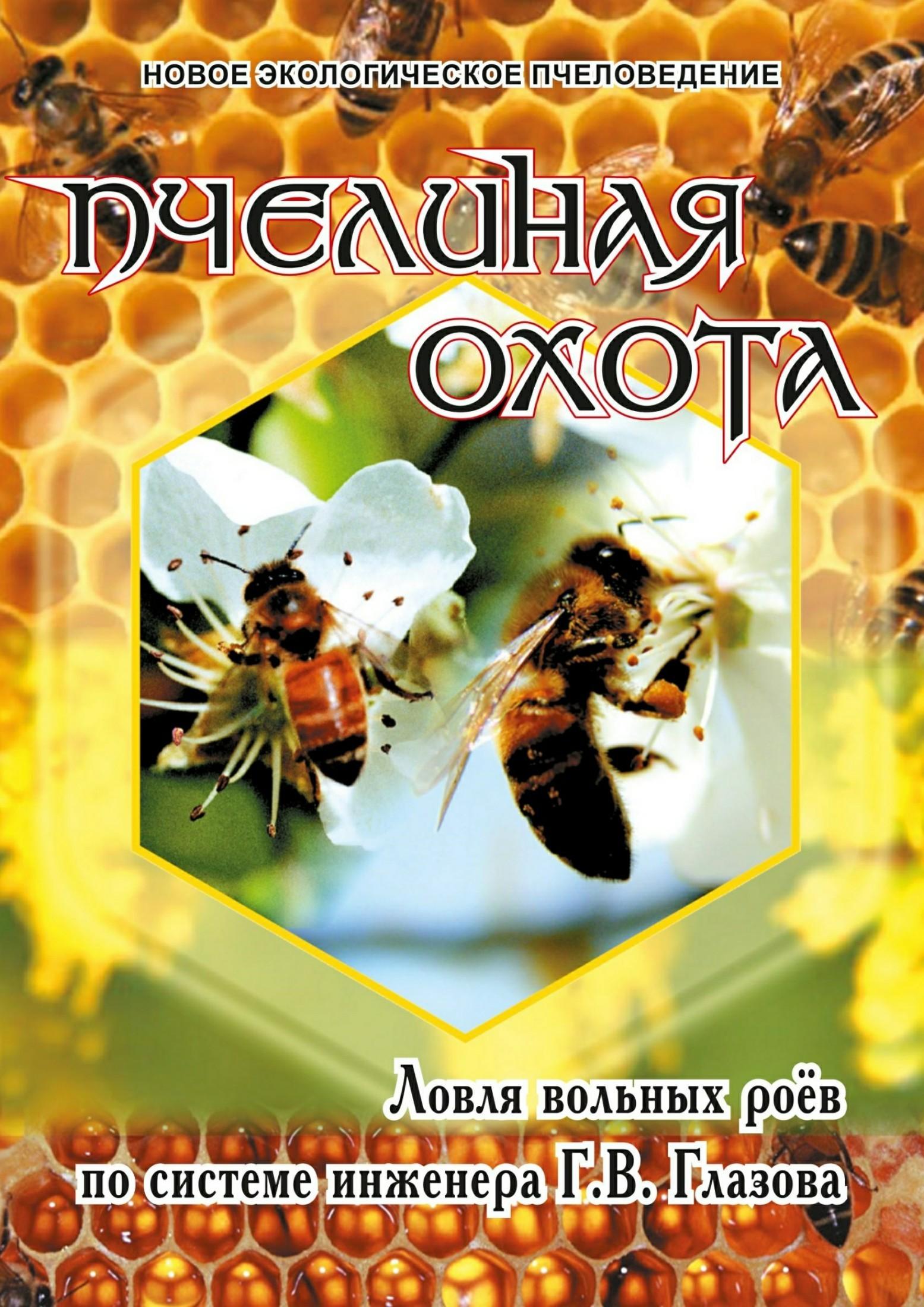 Геннадий Глазов - Пчелиная охота. Ловля вольных роёв по системе инженера Г.В. Глазова