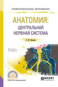 Сергей Юрьевич Киселев - Анатомия: центральная нервная система. Учебное пособие для СПО