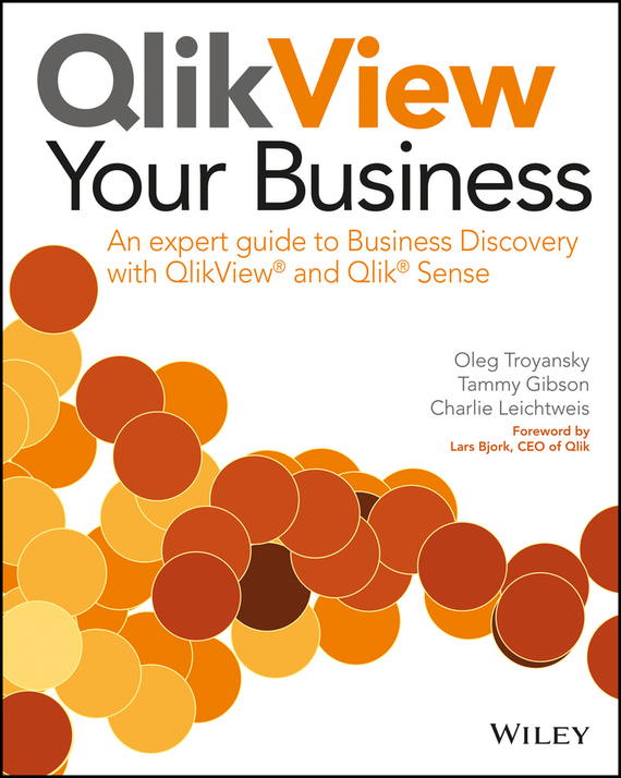 Lars Bjork QlikView Your Business. An Expert Guide to Business Discovery with QlikView and Qlik Sense modeling spherical image objects using wavelets