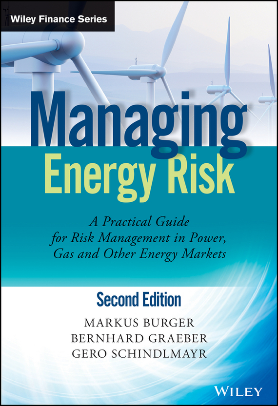 Markus  Burger Managing Energy Risk. An Integrated View on Power and Other Energy Markets managing operational risk in financial markets