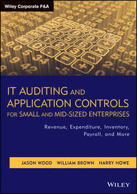 Brown William Montgomery - IT Auditing and Application Controls for Small and Mid-Sized Enterprises. Revenue, Expenditure, Inventory, Payroll, and More