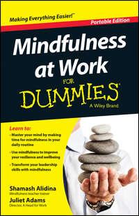 Shamash  Alidina - Mindfulness At Work For Dummies