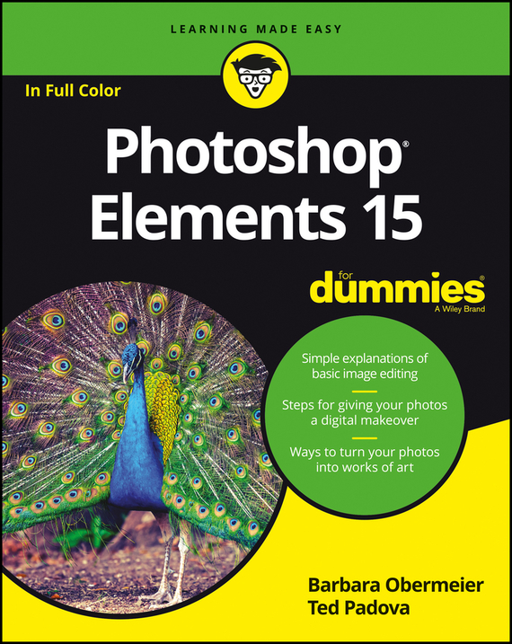 Barbara Obermeier Photoshop Elements 15 For Dummies mastering photoshop layers