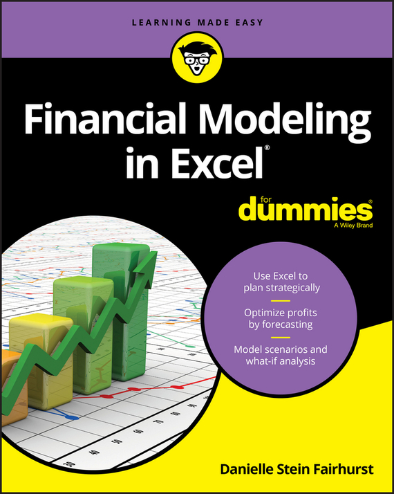 Danielle Stein Fairhurst Financial Modeling in Excel For Dummies leslie stein the making of modern israel 1948 1967