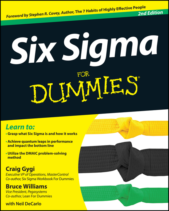 Bruce Williams Six Sigma For Dummies george eckes six sigma team dynamics the elusive key to project success