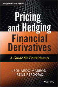 Leonardo  Marroni - Pricing and Hedging Financial Derivatives. A Guide for Practitioners