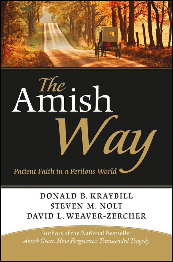 Donald Kraybill B. The Amish Way. Patient Faith in a Perilous World richard rohr falling upward a spirituality for the two halves of life
