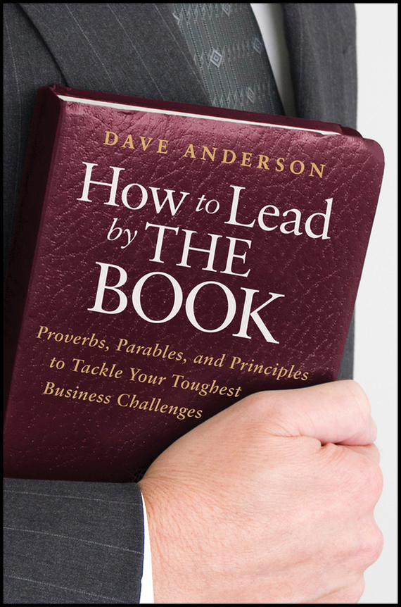 Dave Anderson How to Lead by The Book. Proverbs, Parables, and Principles to Tackle Your Toughest Business Challenges how to do a research project