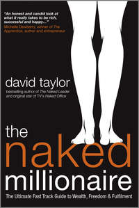 David  Taylor - The Naked Millionaire. The Ultimate Fast Track Guide to Wealth, Freedom and Fulfillment