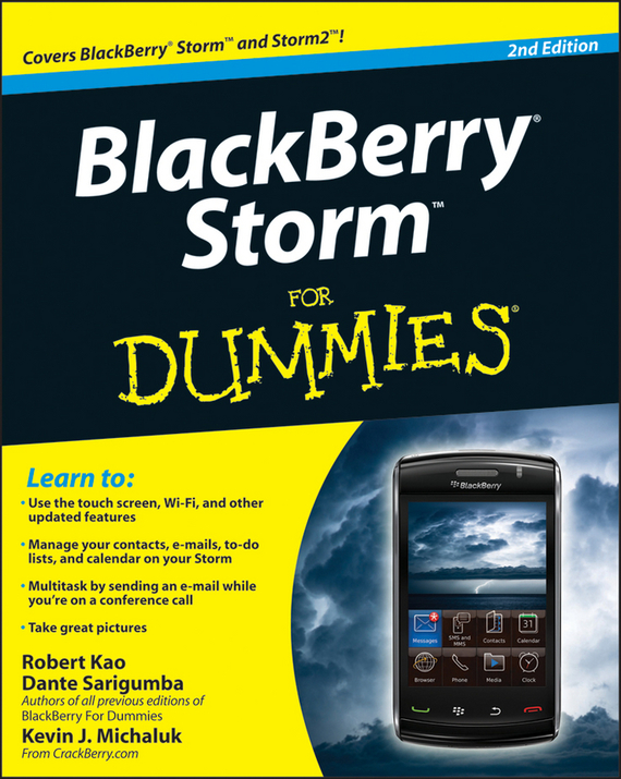 Robert Kao BlackBerry Storm For Dummies чехол для blackberry z10 printio furious storm dragon head