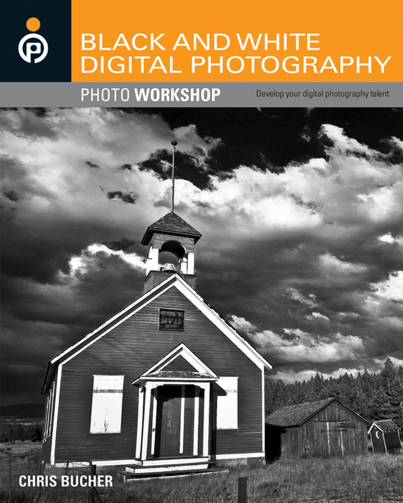 Chris Bucher Black and White Digital Photography Photo Workshop ISBN: 9781118090336 snow road winter style old master photography backdrops for newborn digital printed background for photo studio fotografia
