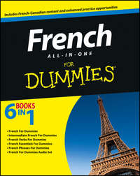 Consumer Dummies - French All-in-One For Dummies