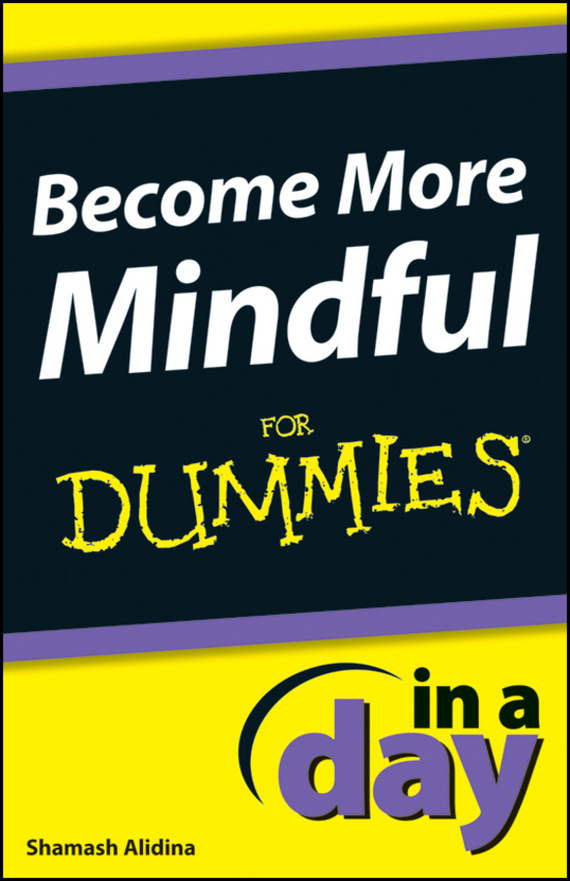 Shamash Alidina Become More Mindful In A Day For Dummies ISBN: 9781118380482 a modern introduction to differential equations
