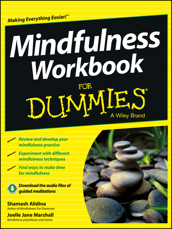 Shamash  Alidina Mindfulness Workbook For Dummies improving quality of life in anxiety and depression