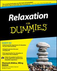 Shamash  Alidina - Relaxation For Dummies
