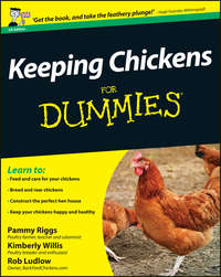 Pammy  Riggs - Keeping Chickens For Dummies