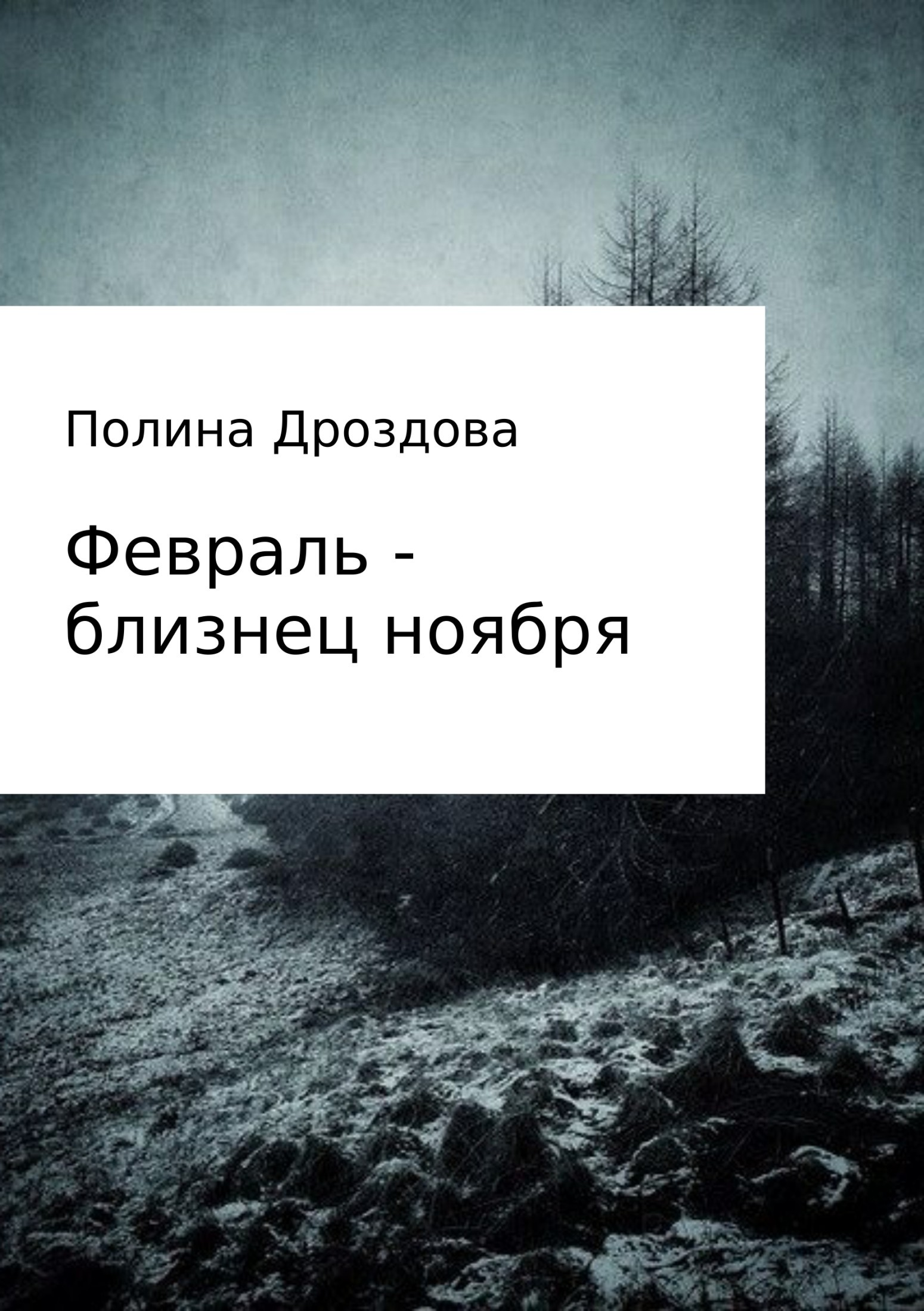 Полина Викторовна Дроздова. Февраль – близнец ноября