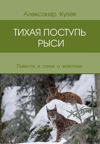 Александр Кулев - Тихая поступь рыси (сборник)