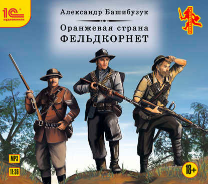 Александр Башибузук Оранжевая страна. Фельдкорнет
