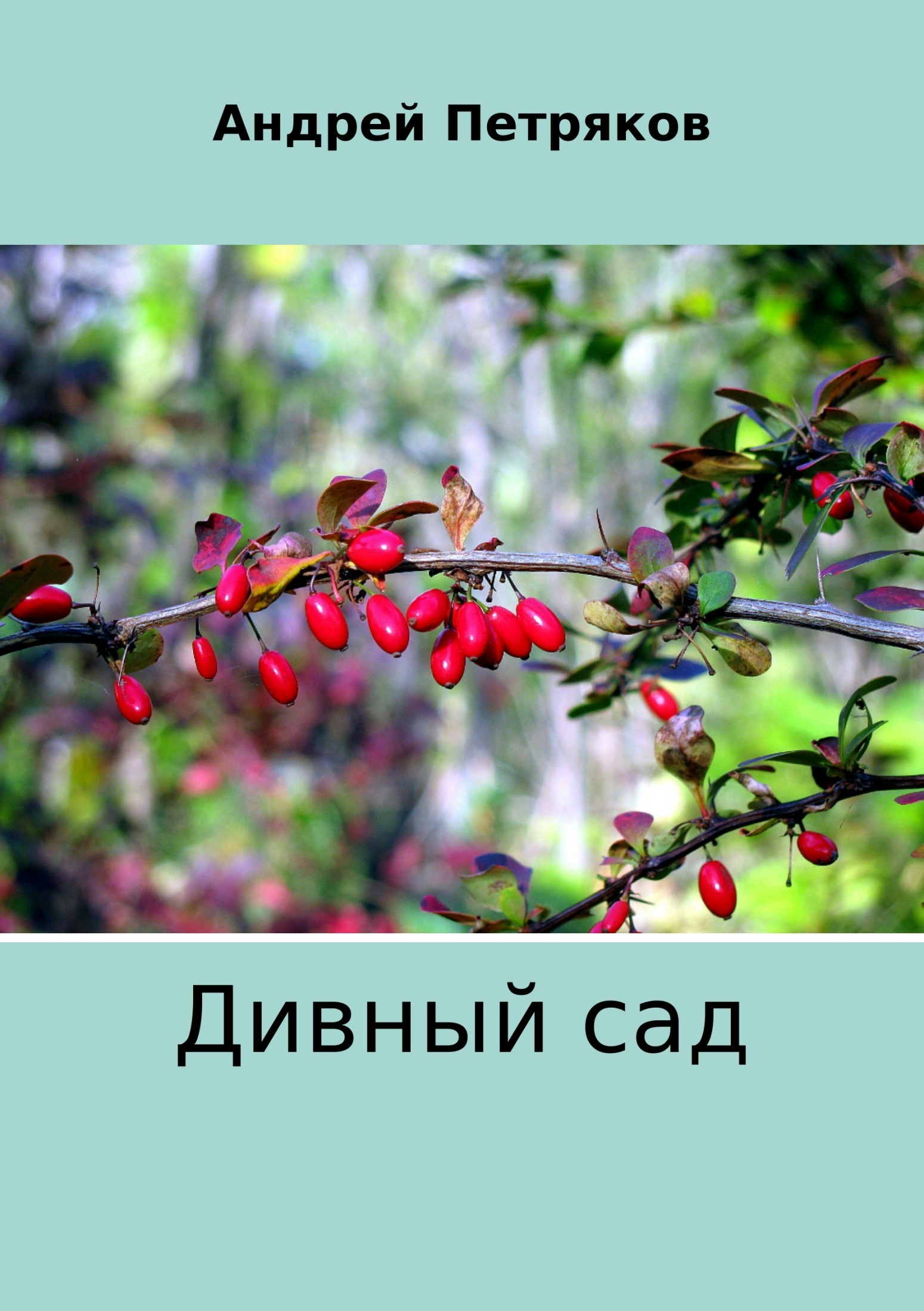 Андрей Валентинович Петряков Дивный сад