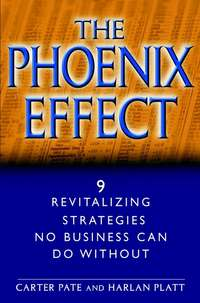 Carter Pate - The Phoenix Effect. 9 Revitalizing Strategies No Business Can Do Without