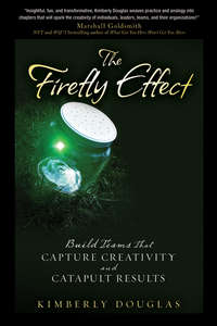 Kimberly  Douglas - The Firefly Effect. Build Teams That Capture Creativity and Catapult Results
