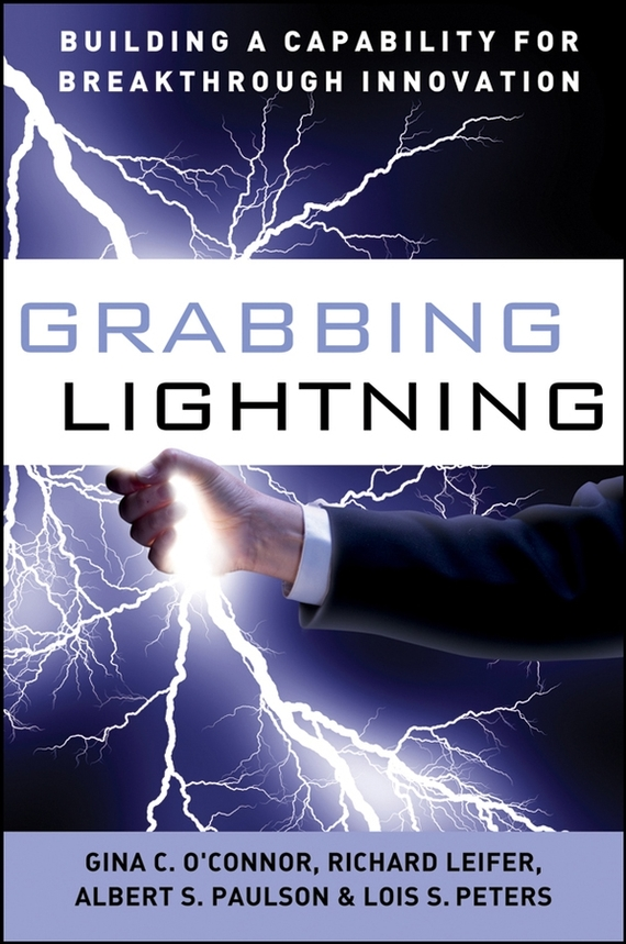 G. O'Connor C. Grabbing Lightning. Building a Capability for Breakthrough Innovation sweetness and lightning 4