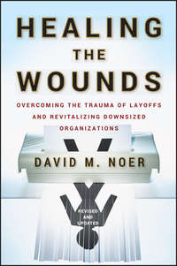 David Noer M. - Healing the Wounds. Overcoming the Trauma of Layoffs and Revitalizing Downsized Organizations