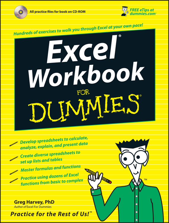 Greg  Harvey Excel Workbook For Dummies rene kratz fester biology workbook for dummies