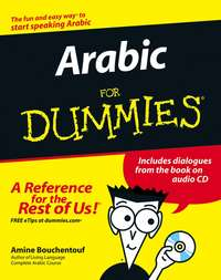 Amine Bouchentouf - Arabic For Dummies