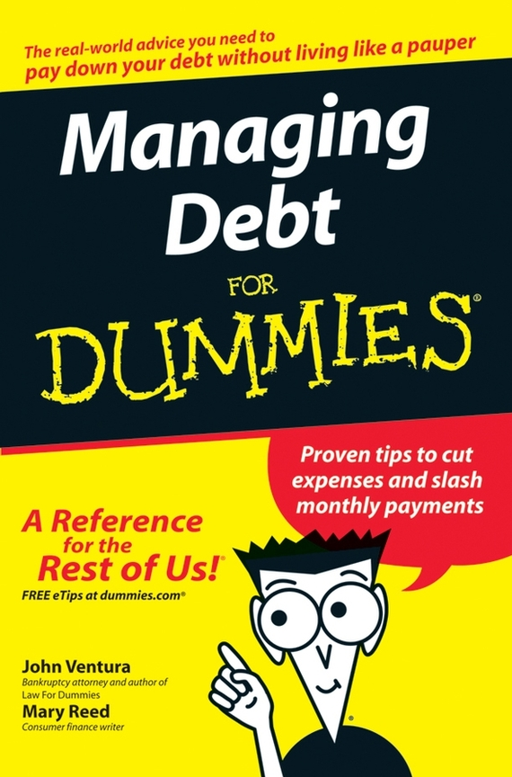 John  Ventura Managing Debt For Dummies managing projects made simple