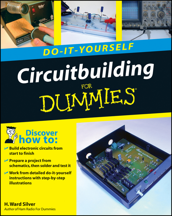 H. Silver Ward Circuitbuilding Do-It-Yourself For Dummies vicky ward the liar s ball