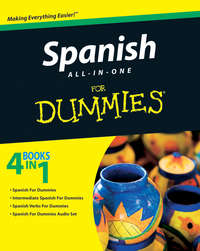 Consumer Dummies - Spanish All-in-One For Dummies