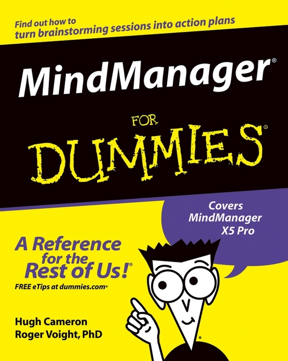 Hugh  Cameron MindManager For Dummies software selection for a liner shipping company