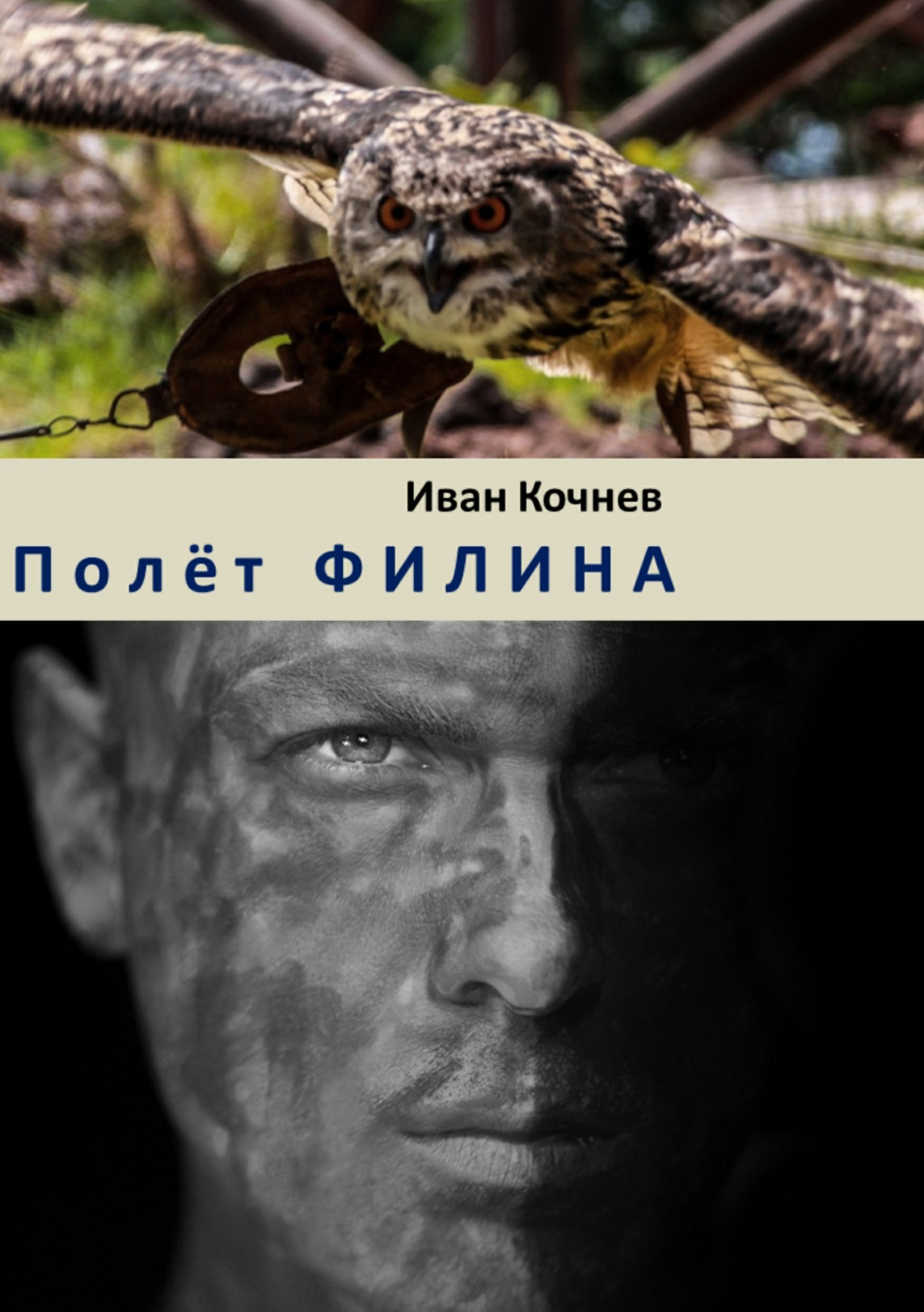 Иван Кочнев Полёт Филина иван бунин жизнь арсеньева