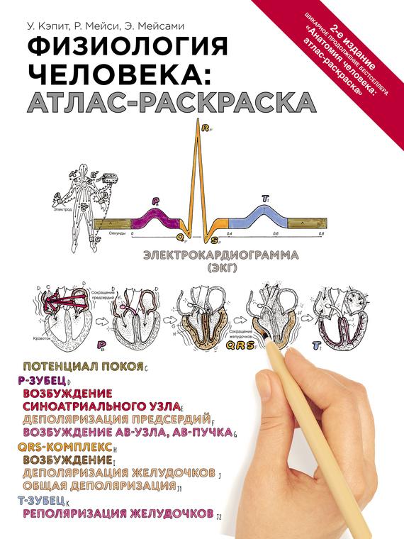 Уинн Кэпит Физиология человека: атлас-раскраска уинн кэпит анатомия человека атлас раскраска