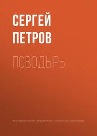 Сергей Петров - Поводырь