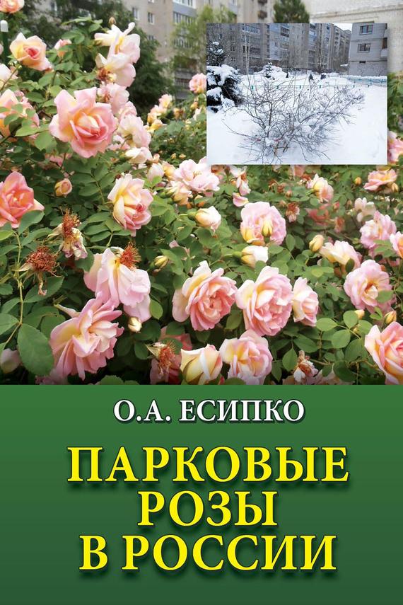 Скачать Парковые розы в России быстро