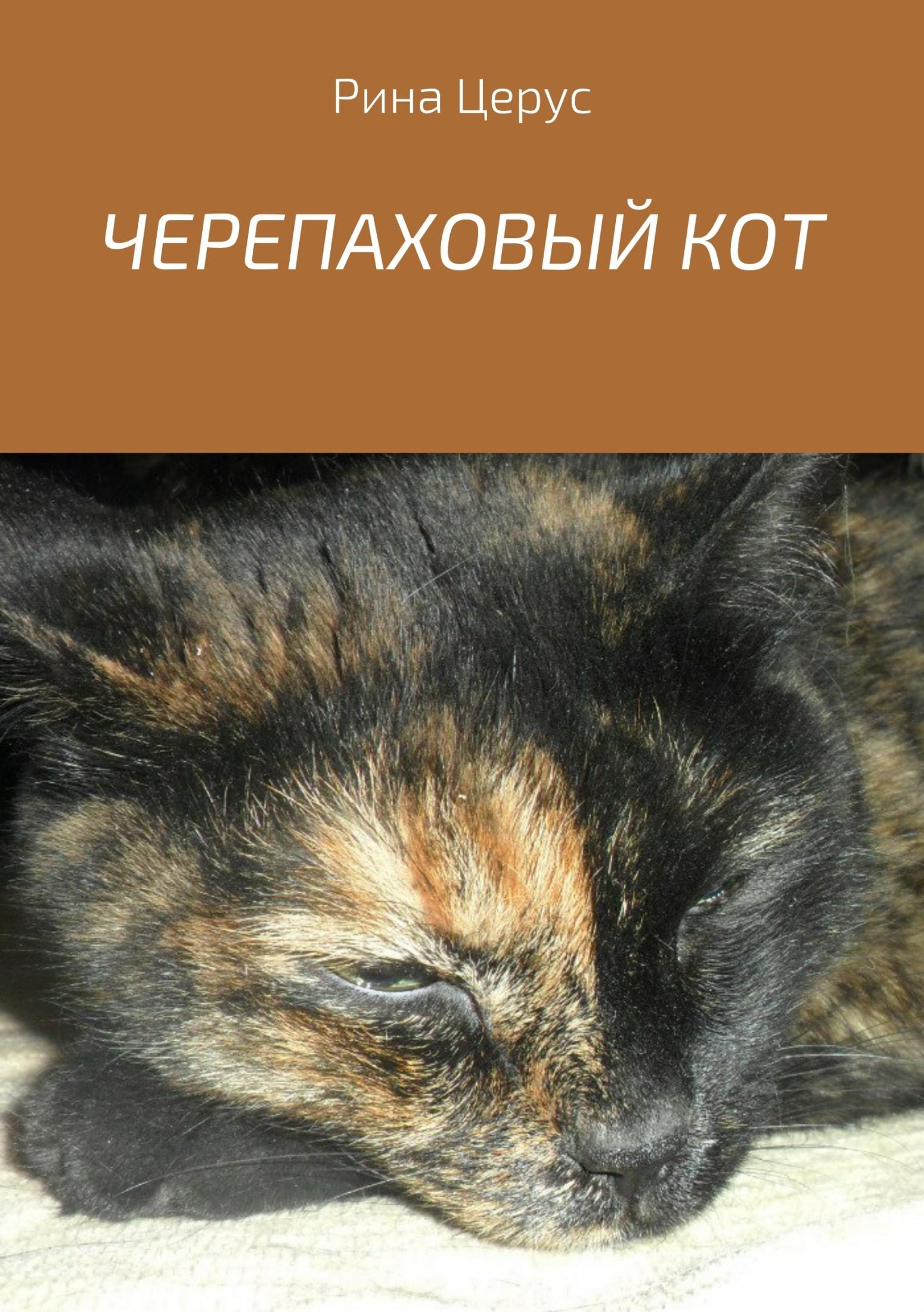 Рина Церус ЧЕРЕПАХОВЫЙ КОТ тасбулатова диляра керизбековна кот консьержка и другие уважаемые люди