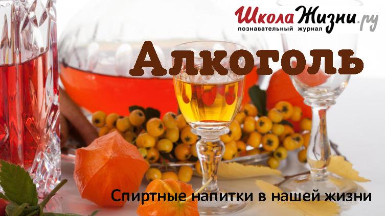 Виктория Белкина Какие напитки приготовить зимой? виктория белкина какие напитки приготовить зимой