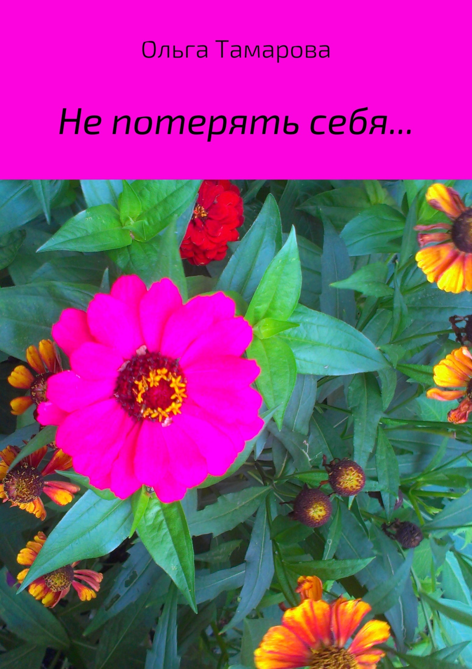 Не потерять себя… Сборник стихотворений