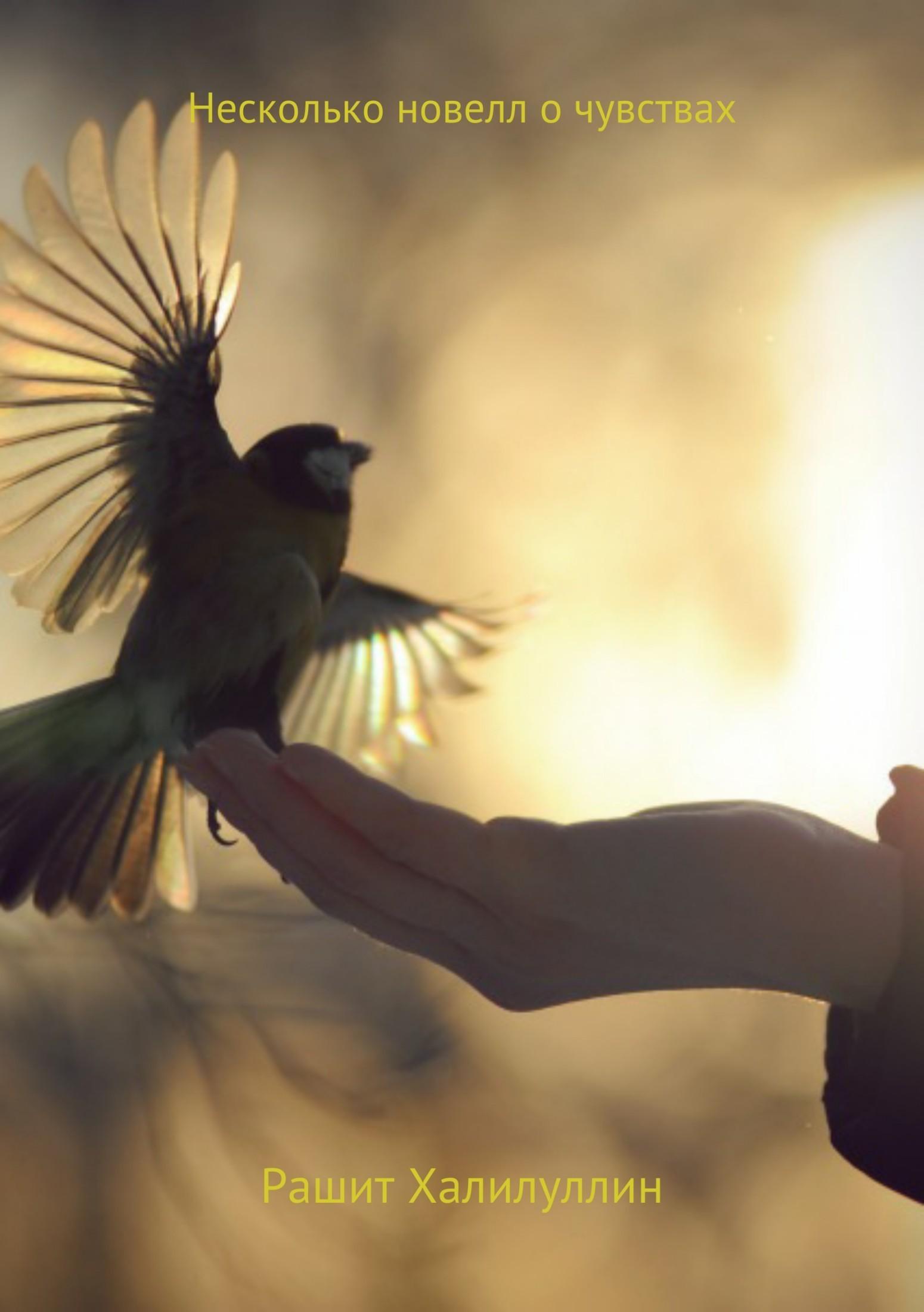 Рашит Халилуллин Несколько новелл о чувствах о чувствах