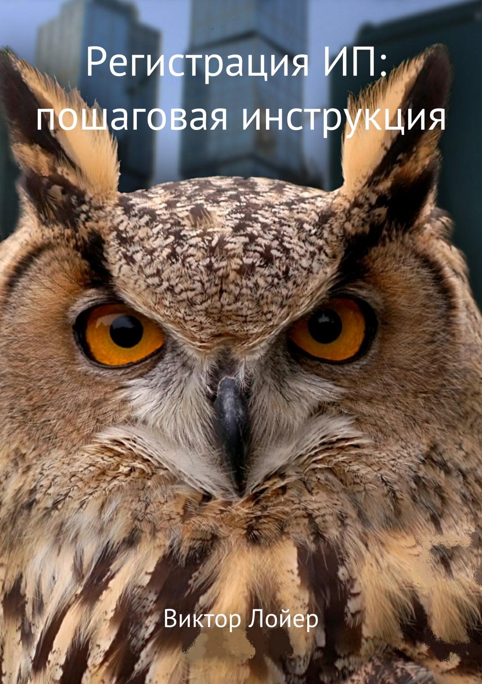Виктор Александрович Лойер. Регистрация ИП: пошаговая инструкция