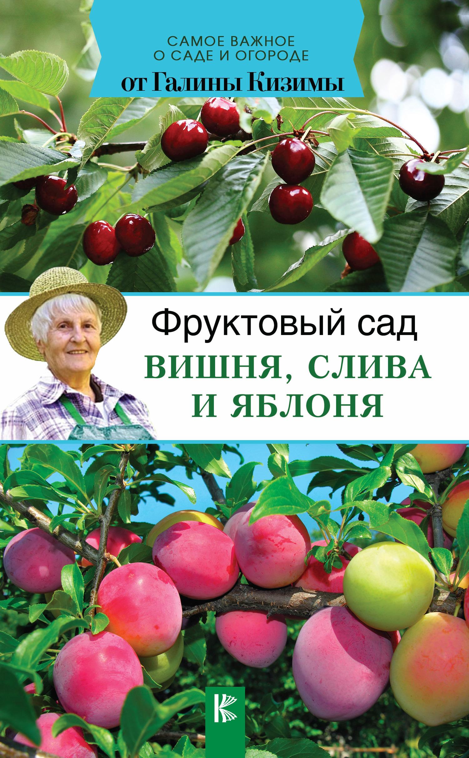 Скачать Фруктовый сад. Вишня, слива и яблоня быстро