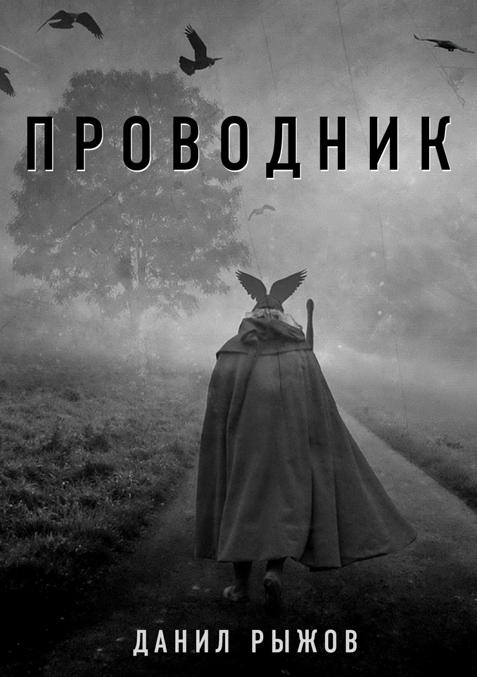 Данил Рыжов. Проводник