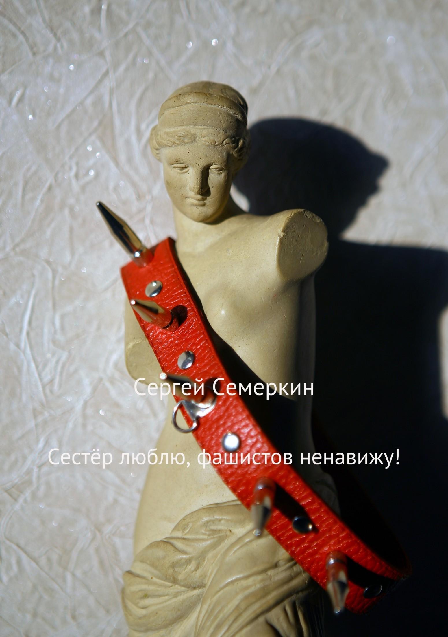 Сергей Владимирович Семеркин. Сестёр люблю, фашистов ненавижу!