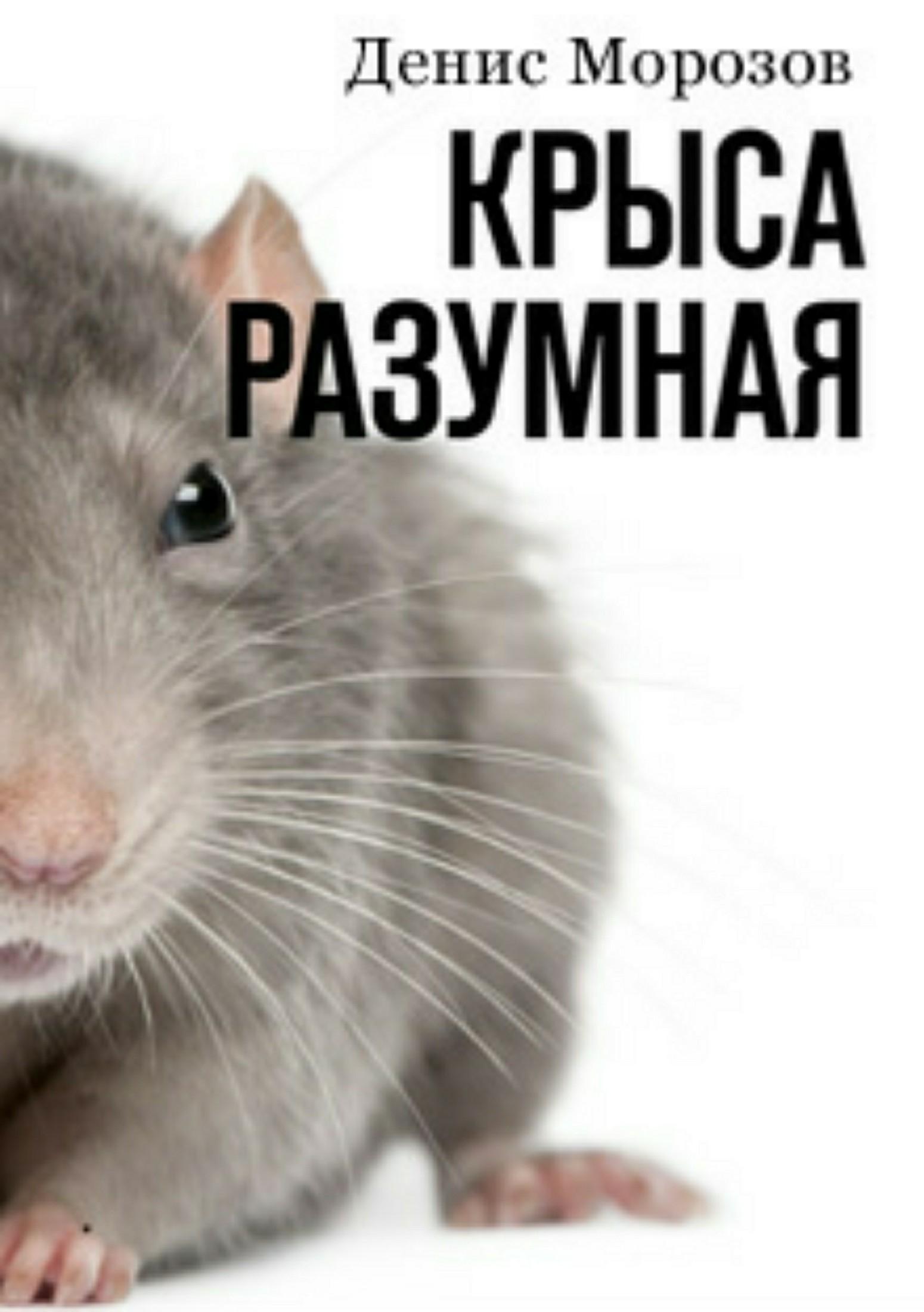 Денис Владимирович Морозов. Крыса Разумная